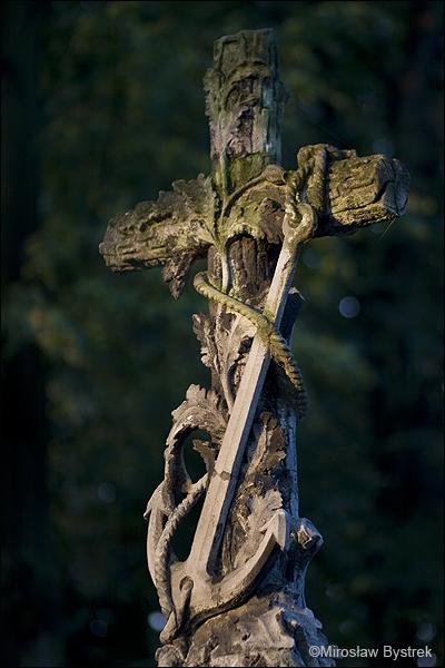 obok kotwicy mak jako symbol snu wiecznego