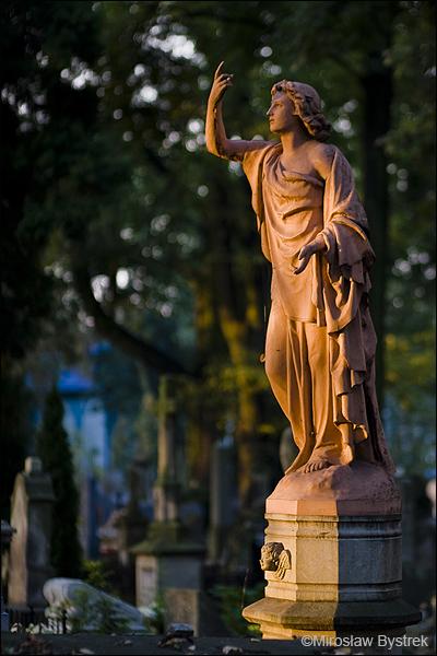 Stary Cmentarz w Tarnowie 3.