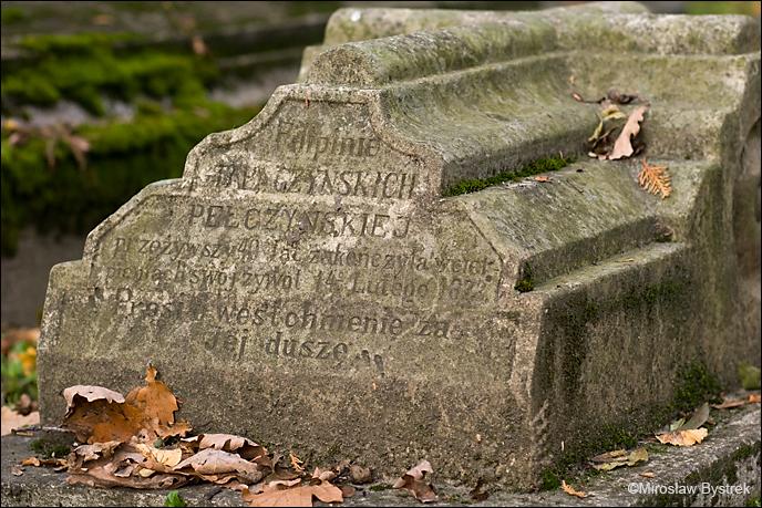 Nagrobek w kształcie sarkofagu.