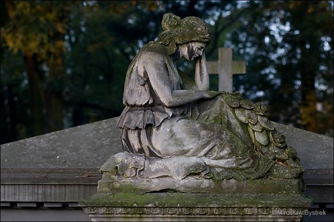 Stary Cmentarz w Tarnowie 1.