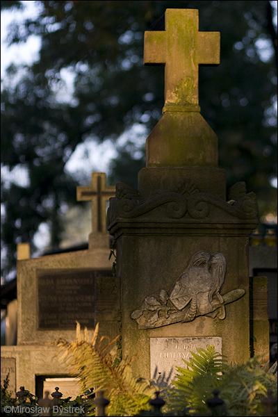 Hełm - symbol śmierci na polu bitwy, żołnierskich dokonań.