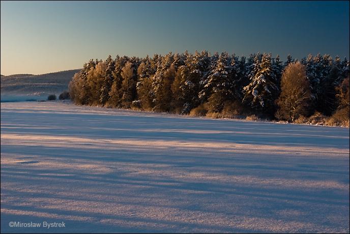 Zimowy krajobraz Beskidu Niskiego.