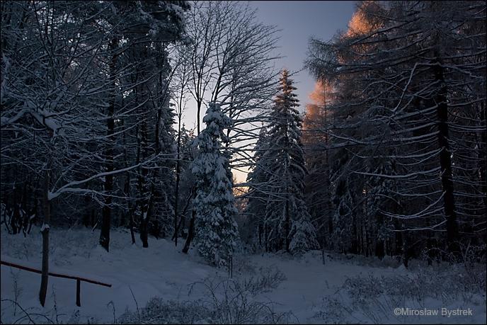 Na Przełęczy Małastowskiej