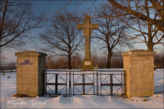 Januszkowice cmentarz wojenny nr 217