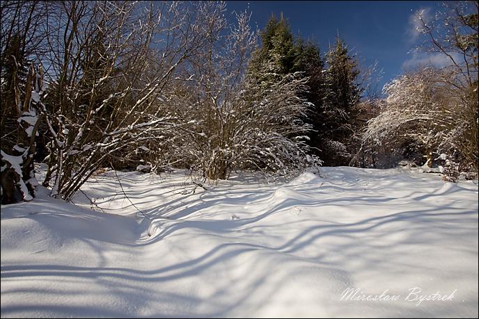 11. zima w Beskidzie Niskim