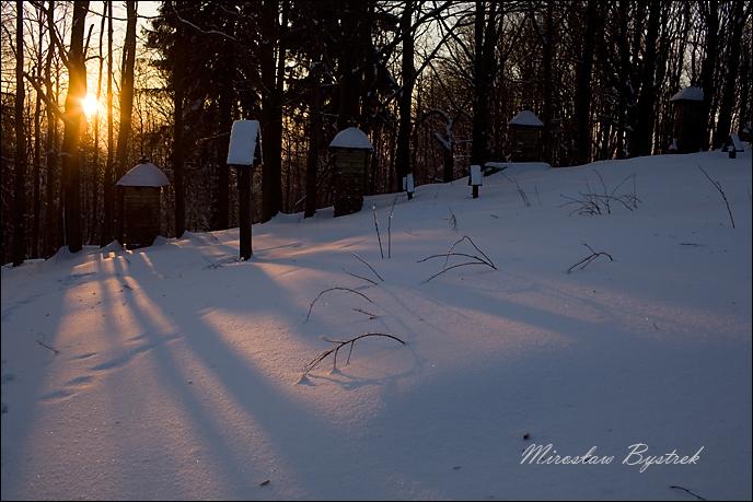 cmentarze Beskidu Niskiego.