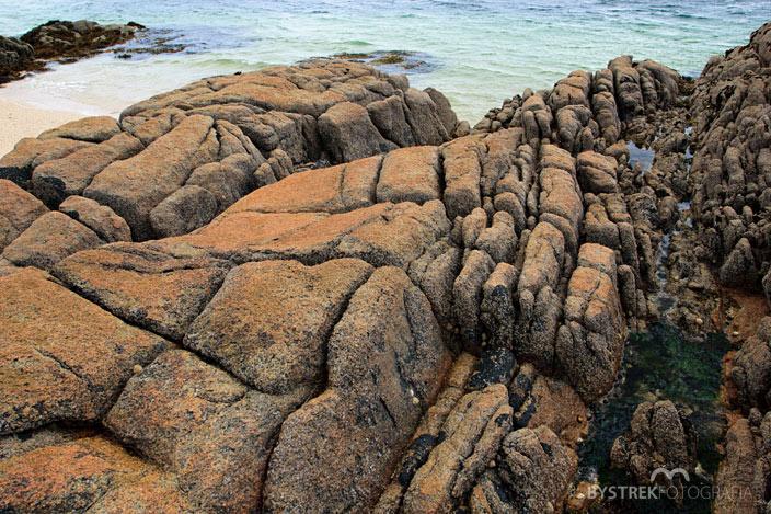 koralowa plaża w Irlandii