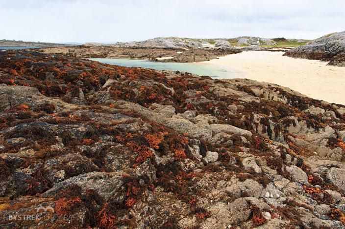 skały na plaży