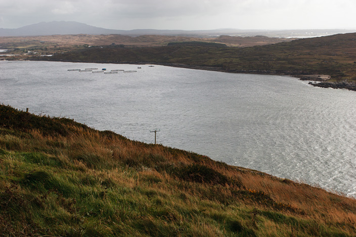 Clifden Bay