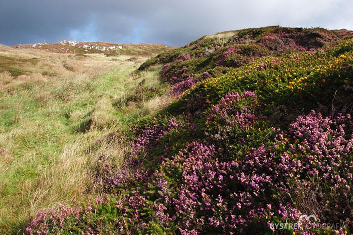 wzgórza na Sky Road Irlandia