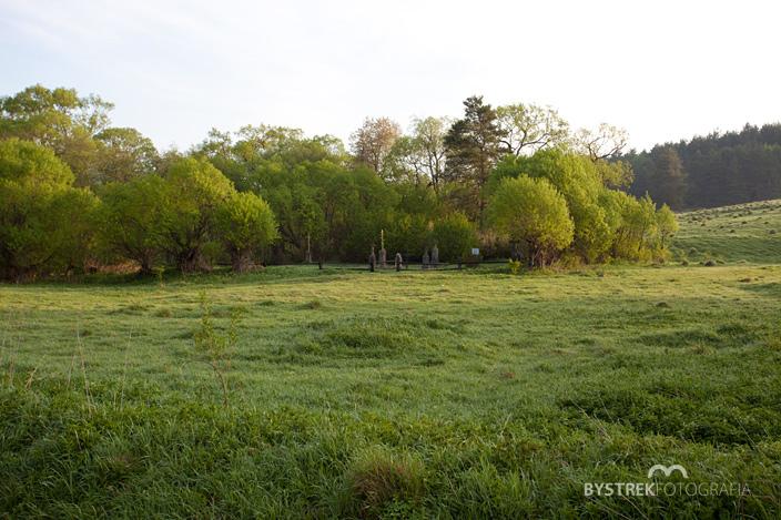 cmentarz łemkowski ukryty wśród drzew