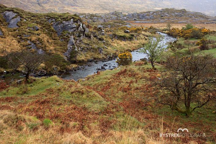 górski strumień Irlandia